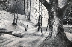 Landscape Painting of an English Woodland Forest by British Contemporary Artist