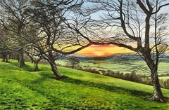 Landscape Painting of an English Woodland Sunset by British Contemporary Artist