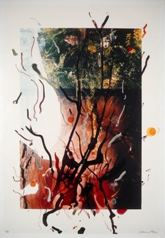Rebecca Horn, Untitled, lithograph of hand painted photograph