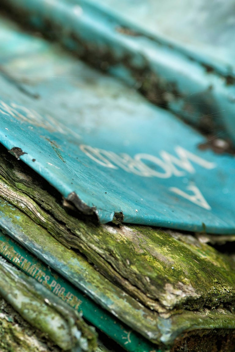 """Rebecca Skinner's """"Book Beauty 1"""" is a 16 x 24 inch metal print of plant life growing on books left to decay in a deserted school. The color photograph with hues of green and blue is an example of how quickly nature reclaims the abandoned. The print"""