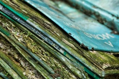 """Book Beauty 1"", Rebecca Skinner, abandoned school, metal print, green, blue"