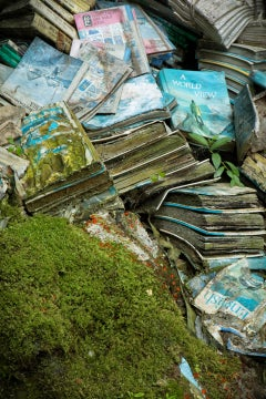"""Book Beauty 2"", Rebecca Skinner, abandoned school, metal print, green, blue"