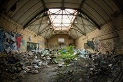 """Book Beauty 6"", photograph, abandoned school, gymnasium, nature, green, blue"