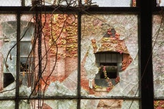 """Broken"", color photo, autumn, abandoned, factory, window, industry, earth tones"