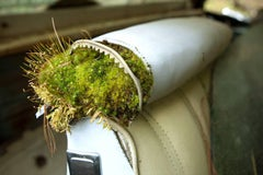 """""""Life Finds a Way"""", color photograph, abandoned car, contemporary, moss, nature"""