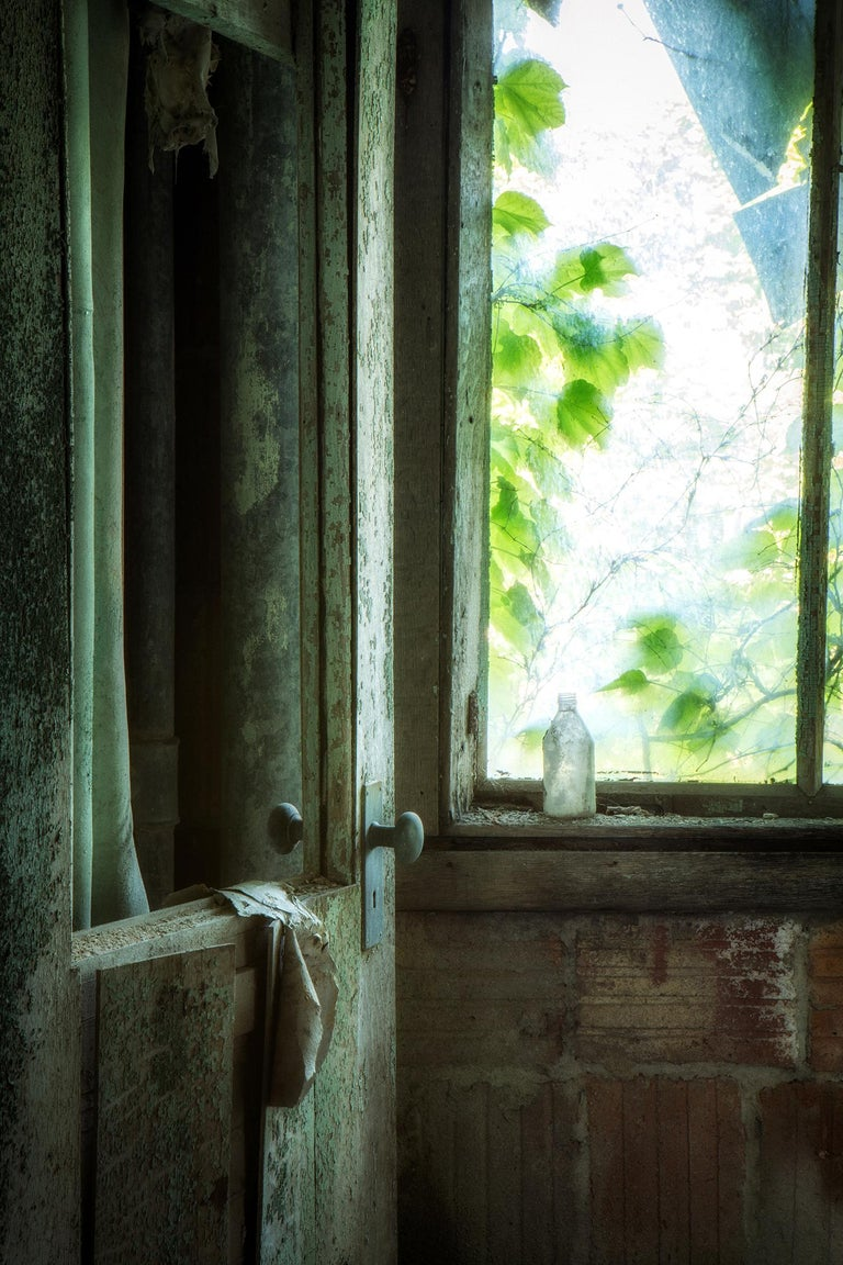 """Rebecca Skinner's """"Remnants"""" is a 18 x 12 inch color print of a vintage door and bottle found in an abandoned building. Leaves and greenery peek through an old window in this soft, still life image with blue and green tones.  With satin finish, the"""