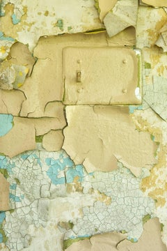 """Transform"", photograph, texture, switch, peeling paint, metal print, beige"