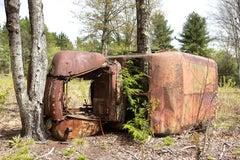 """Trapped"", metal print, color photo, antique, ford, landscape, automobile, truck"
