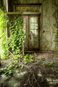 """Within"", color photograph, abandoned, nature, vines, doors, porch, green"