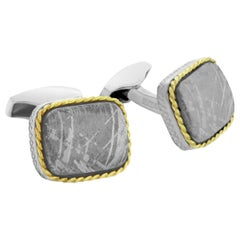 Rectangle Cable Meteorite Cufflinks in Silver with 18 Karat Gold Limited Edition
