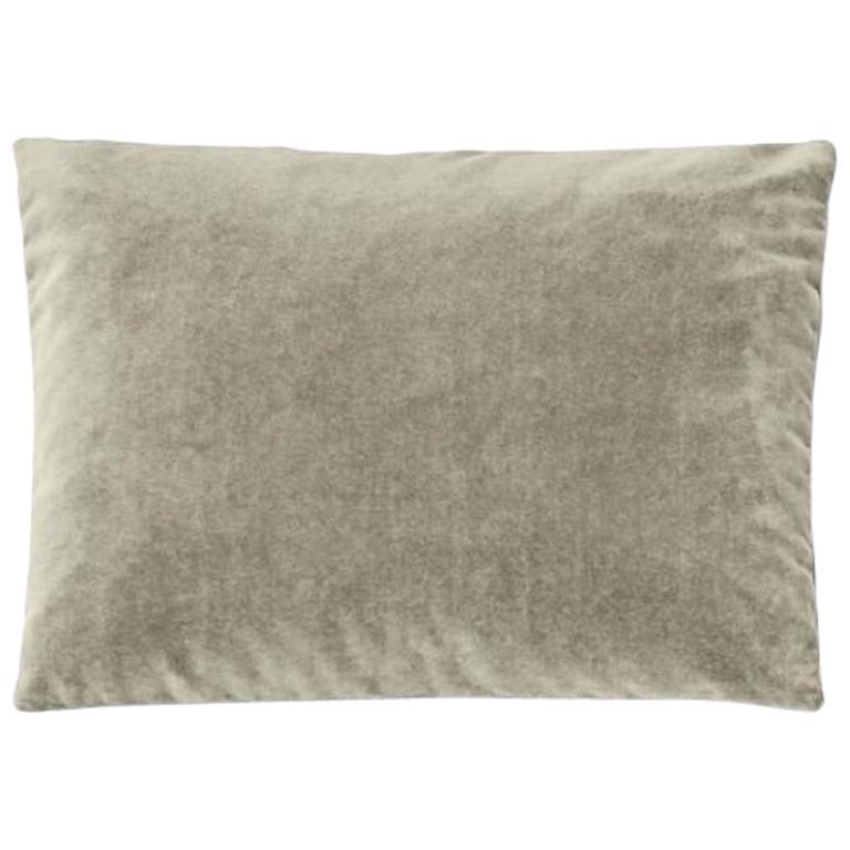 Molteni&C Rectangular Decorative Cushion Light Grey Velvet