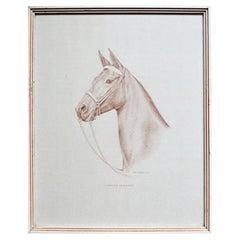 Rectangular Framed Horse Illustration