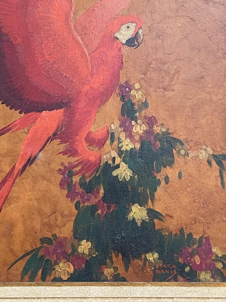 Red Parrot, Oil on Board, Stark Davis In Good Condition For Sale In Doylestown, PA