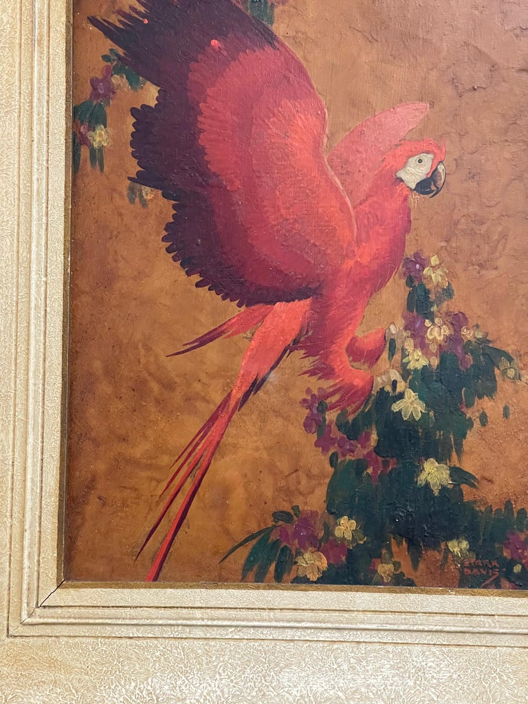 Paint Red Parrot, Oil on Board, Stark Davis For Sale