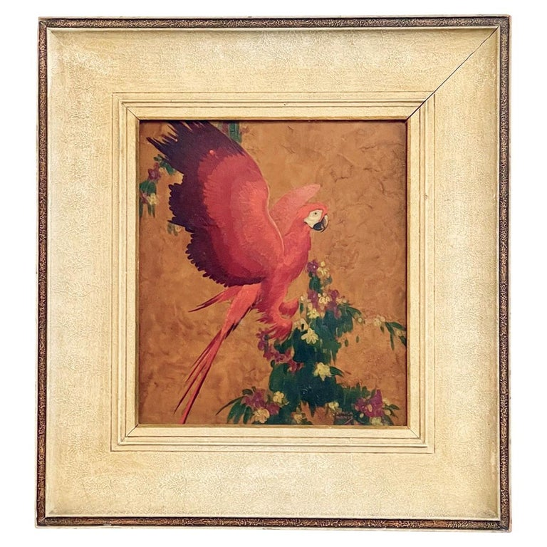 Red Parrot, Oil on Board, Stark Davis For Sale