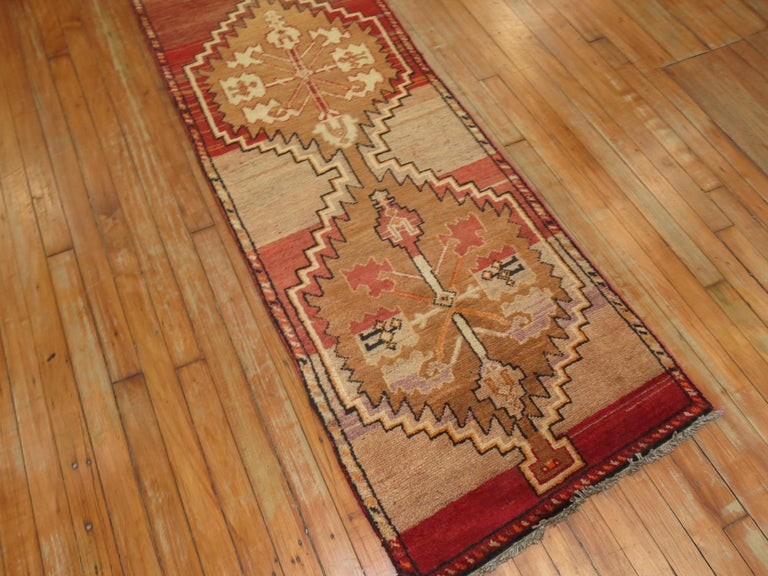 Narrow Turkish Anatolian runner in the red-brown color family.