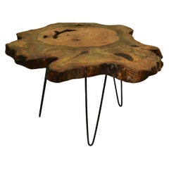 Redwood Tree Live Edge Coffee Table with Hairpin Legs / LECT111