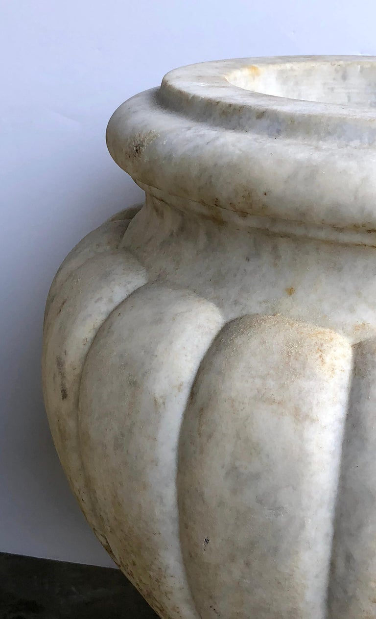 Refined Pair of Italian Neoclassical Style Carved Carrera Marble Lobed Urns In Good Condition For Sale In San Francisco, CA