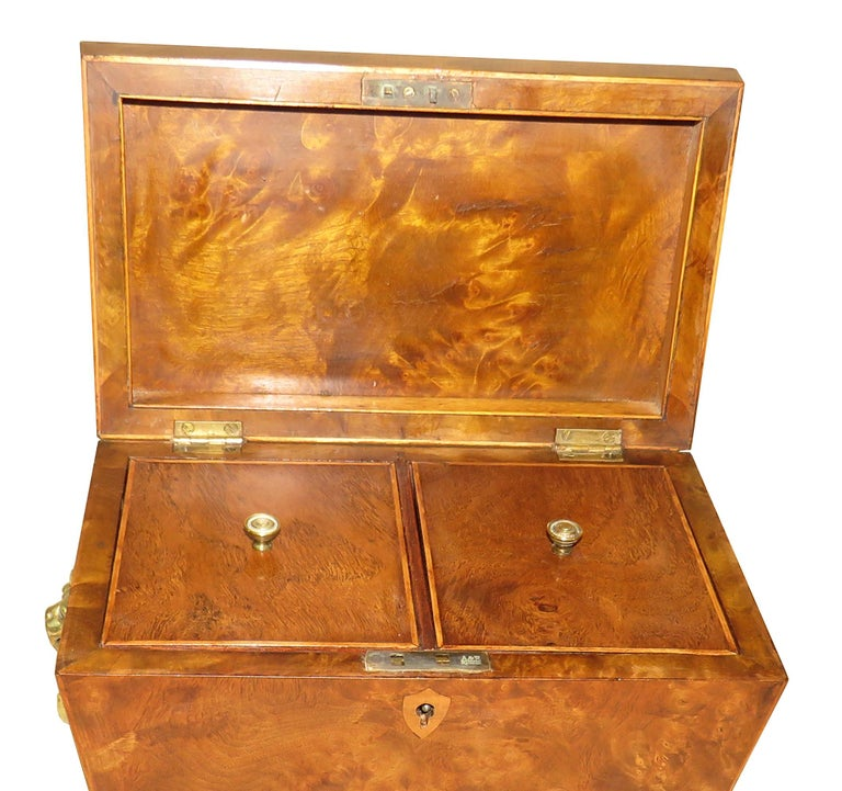 A Fine Quality Regency Period Burr Elm Sarcophagus Shaped Tea Caddy having Strung Decoration And Hinged Lid Enclosing Lidded Divisions With Original Brass Lions Mask Handles To Side Raised On Elegant Original Brass Paw Feet  (This is a fine quality