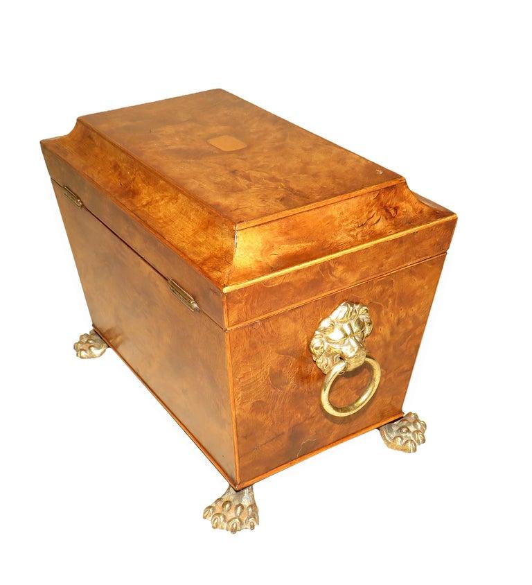 English Regency 19th Century Burr Elm Sarcophagus Tea Caddy For Sale
