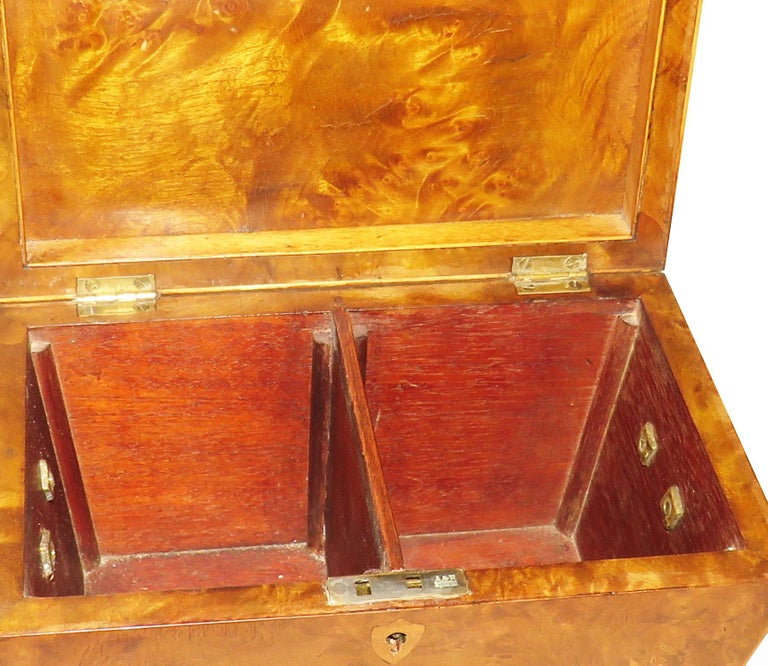 Regency 19th Century Burr Elm Sarcophagus Tea Caddy In Good Condition For Sale In Bedfordshire, GB