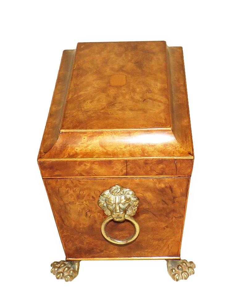 Regency 19th Century Burr Elm Sarcophagus Tea Caddy For Sale 1
