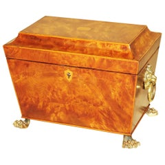 Regency 19th Century Burr Elm Sarcophagus Tea Caddy