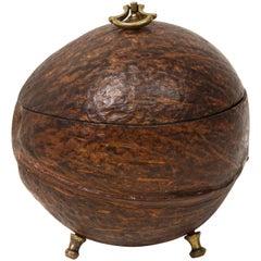 Regency Coconut Shell Tea Caddy