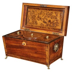 Regency Mahogany Sarcophagus Shaped Tea Caddy