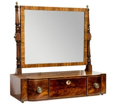 Regency Mahogany Swing Toilet Mirror