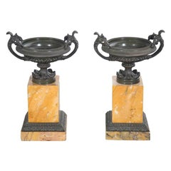 Regency Period Bronze Tazza Urns on Sienna Marble Bases