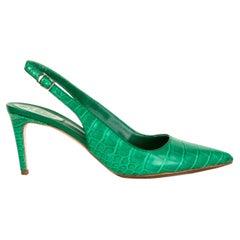 RENE CAOVILLA green Pointed Toe CROCODILE NADINE Slingbacks Shoes 41