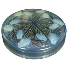 Rene Lalique Opalescent Glass 'Cigales' Box
