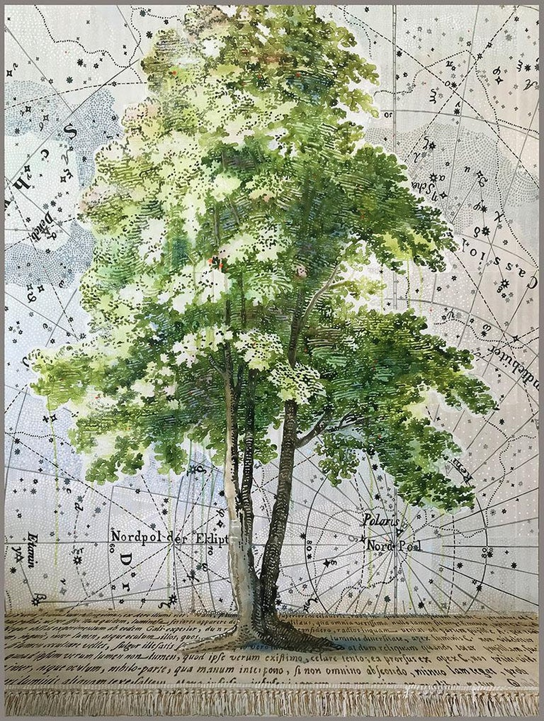 Renee Bott Still-Life Painting - Finding Polaris