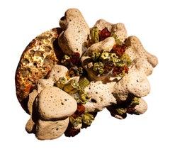 Petrified Coral, Pyromorphite, Amberite, Copper Cabochon