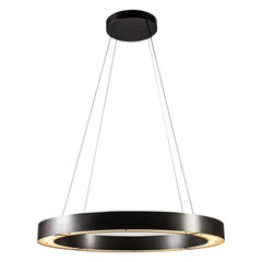 RENG, Hilo II, Forged Steel, Modernist Suspension Ring LED Light