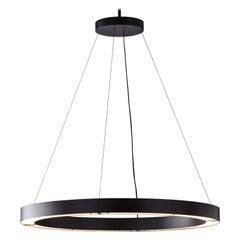 RENG, Hilo III, Modernist Suspension Ring Led Light