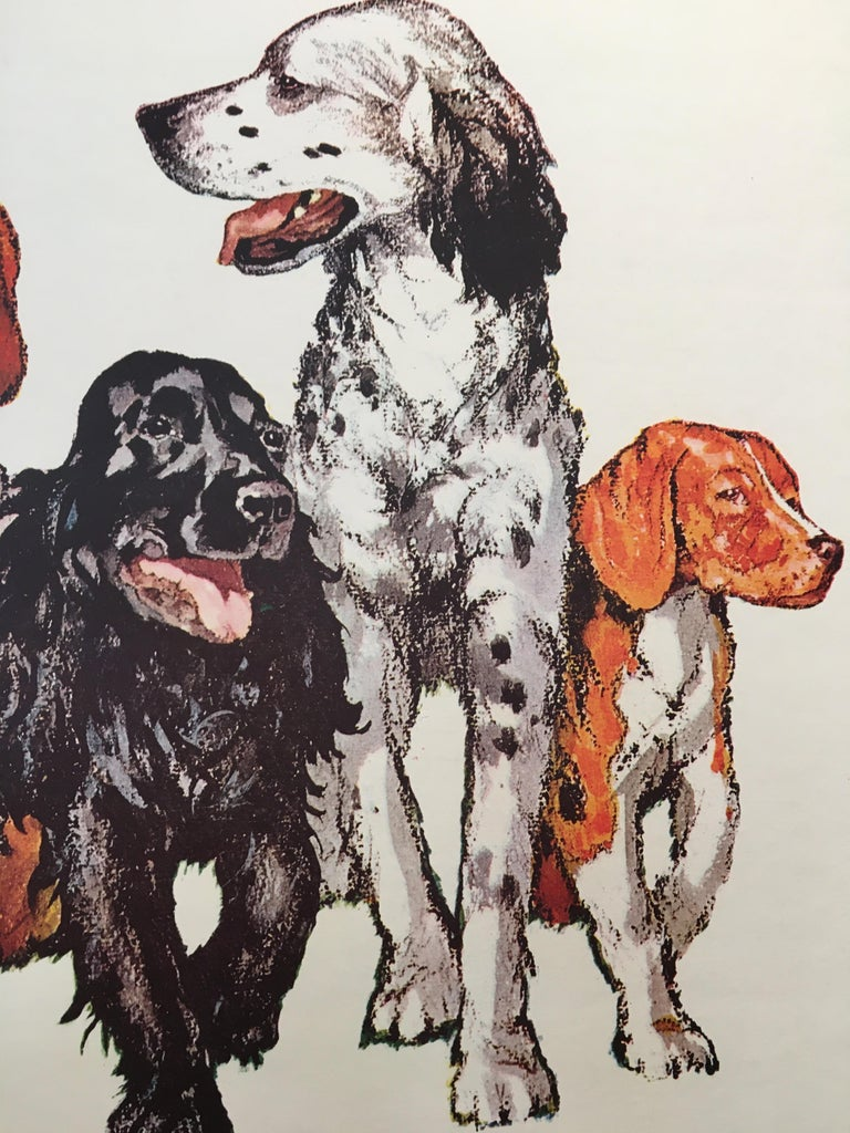 Paper Repas Complet Pour Chiens Voyou Original Vintage French Dog Poster, 1975 For Sale