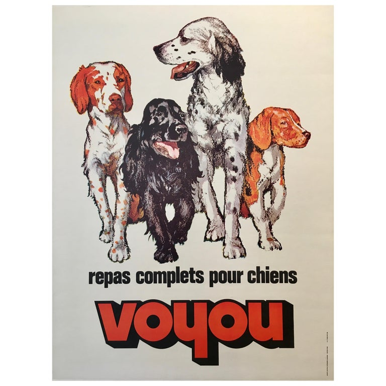 Repas Complet Pour Chiens Voyou Original Vintage French Dog Poster, 1975 For Sale