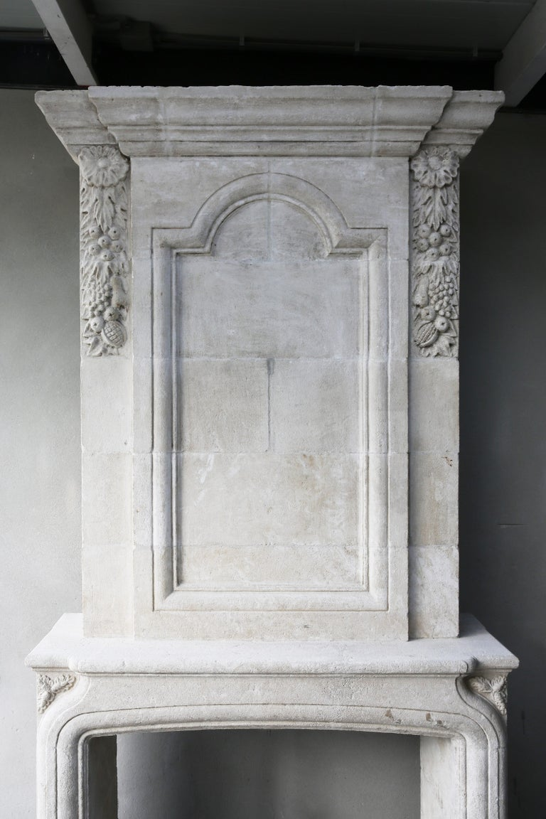 Replica French Castle Fireplace with Trumeau of French Limestone 5