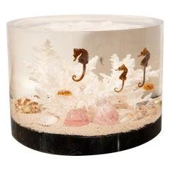 Resin Encased Seascape