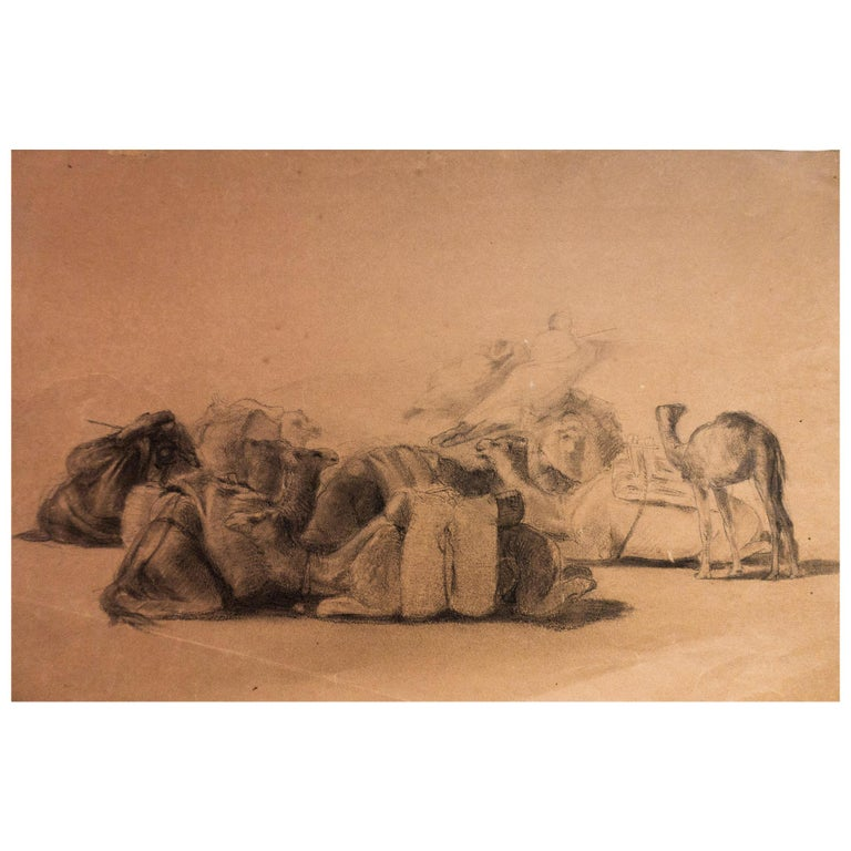 Resting Camel Drawing on Paper by Georges Washington 'Artist' For Sale