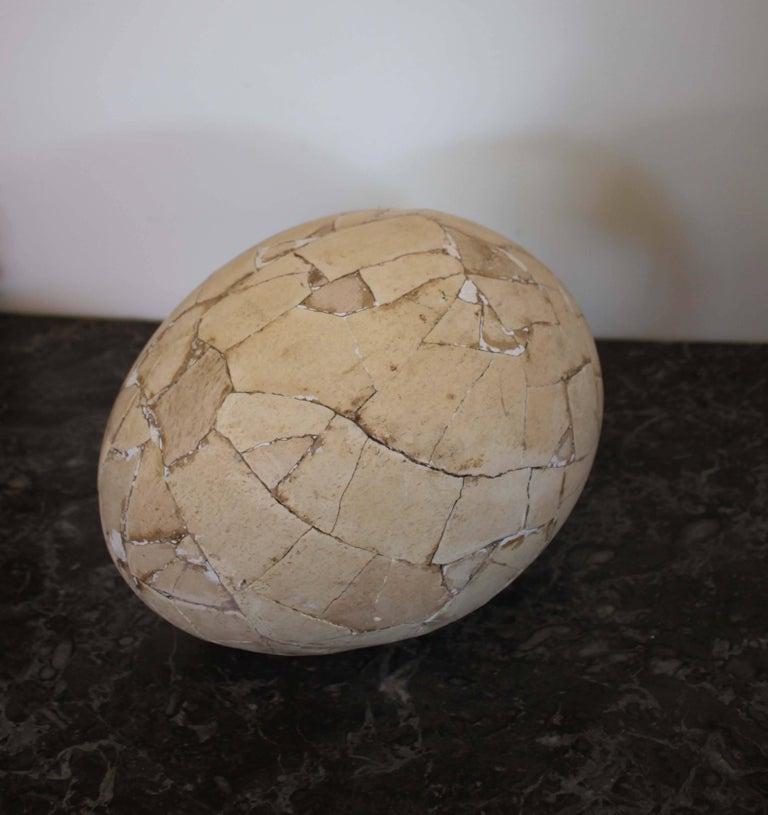 Malagasy Restored Aepyornis Egg, Very Rare
