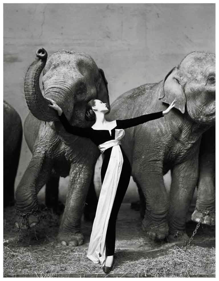 Dovima with Elephants, Evening Dress by Dior, Cirque d'Hiver, Paris, 1955 - Photograph by Richard Avedon