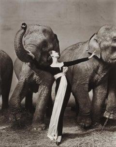 Dovima with Elephants, Evening Dress by Dior, Cirque d'Hiver, Paris