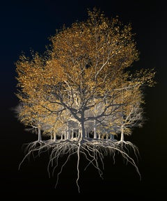 Oak of the Golden Dream by Richard Devonshire, 3D rendering, Limited Edition