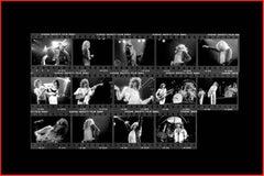 Led Zeppelin, 1978