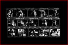 Paul McCartney and Wings, 1976