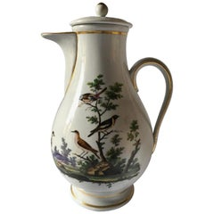 Richard Ginori Mid-18th Century Porcelain Coffee Pot with Natural Landscape