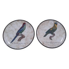 "Richard Ginori Porcelain ""Perroquets"" Set of Two Wall Plates, Italy, 2019"